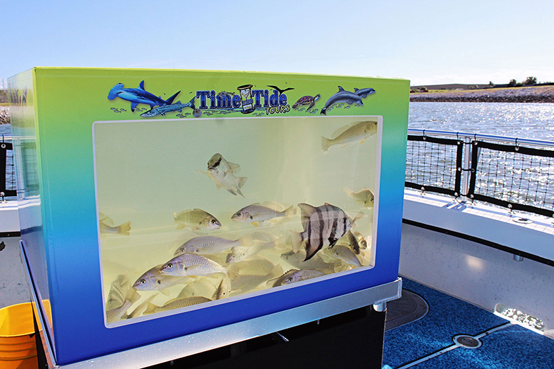 On-board Aquarium
